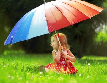 Esernyő (12)