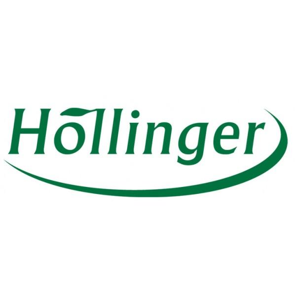 Höllinger